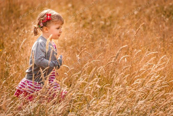 Walking through the high grass
