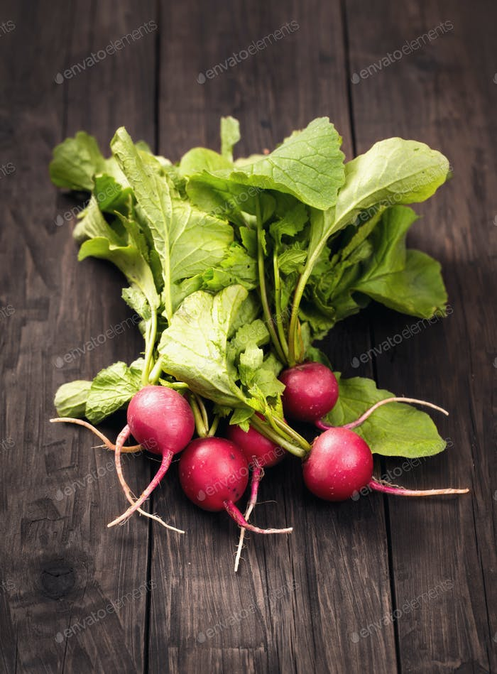 Bunch of fresh garden radishes