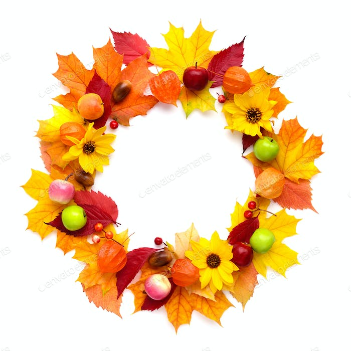 Wreath of autumn leaves with flowers, fruits isolated on white b