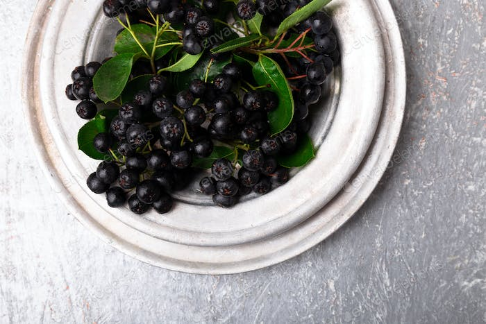 Chokeberry in silver metal bowl on grey background. Aronia berry with leaf. Top view. Copy space.