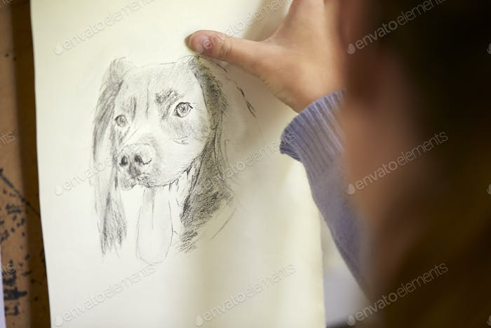 Close Up Of Female Teenage Artist Sitting At Easel Drawing Picture Of Dog From In Charcoal