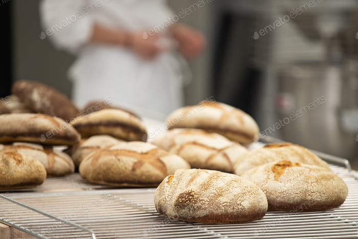 French traditional breads close-up