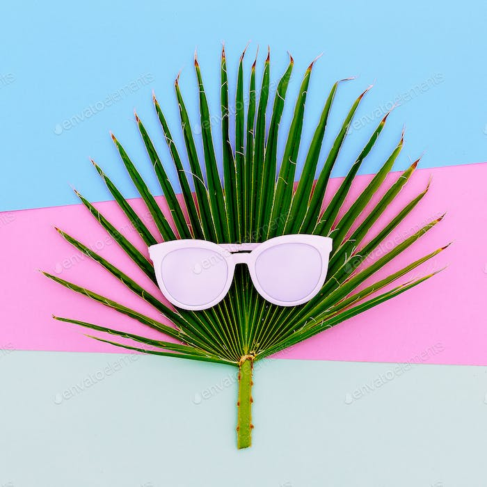 Palm and sunglasses. Tropic style minimal