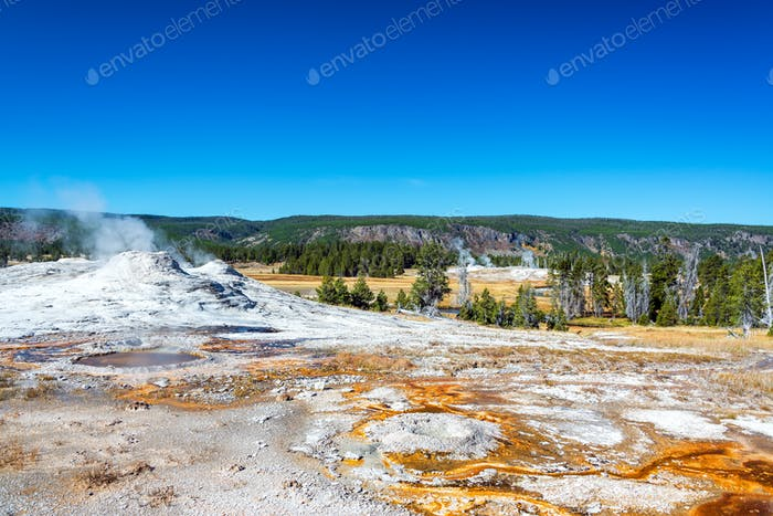 Geyser and Landscape in Yellowstone