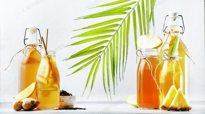 Fermented Kombucha Drinks. Homemade probiotic superfood tea, keto diet drink