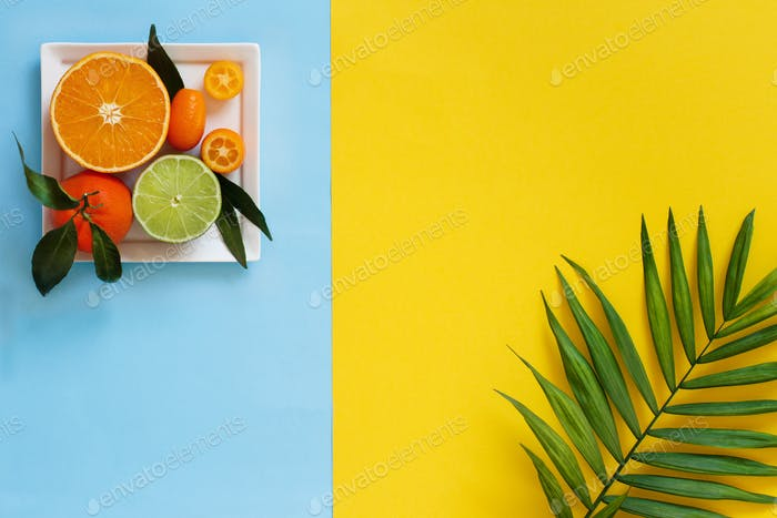Citrus fruits on yellow and light blue background