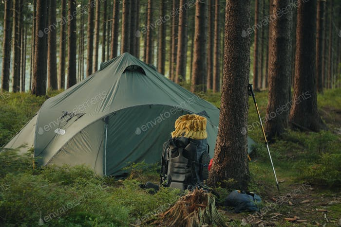 camping setup, green tent and backpack in the woods, nobody on the photo
