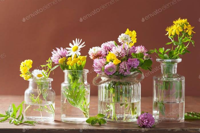 colorful medical flowers and herbs in jars