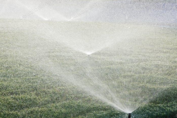Sprinklers on Lawn