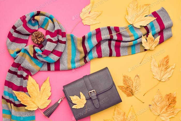 Fall Fashion Minimal Set.Fall Leaves.Pastel colors