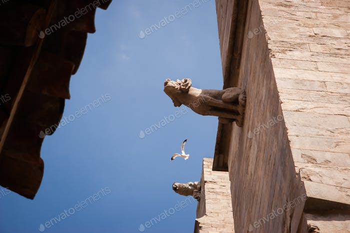 Blue sky with bird between the wall with gargoyles