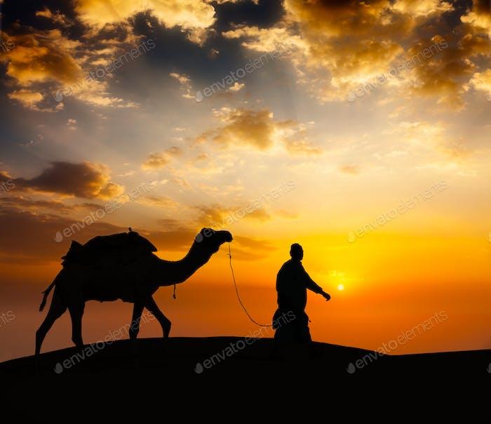 Kamelfahrer mit Kamelen in Wüstendünen
