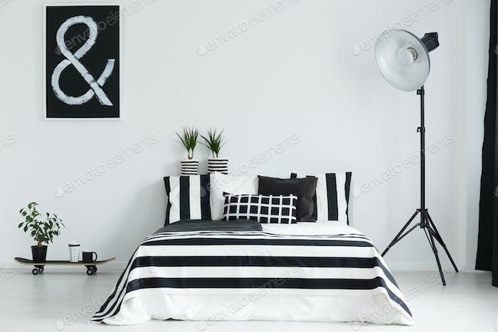 Skateboard, plants, and lamp in bedroom