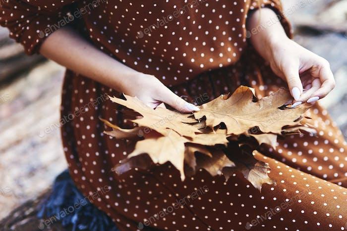 Nahaufnahme der Frau, die herbstliche Blätter im Wald pflücken