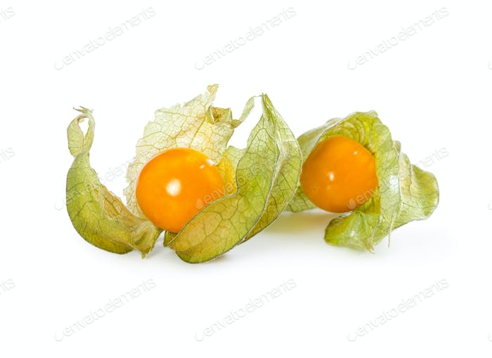 Physalis peruviana isolated on white