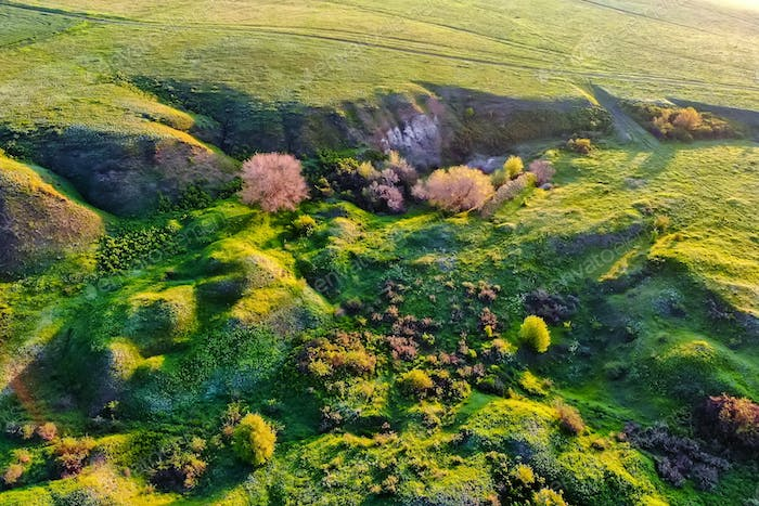 Aerial view green steppe nature in Don region