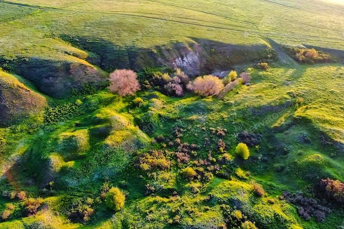 Luftaufnahme grüne Steppe Natur in Don Region
