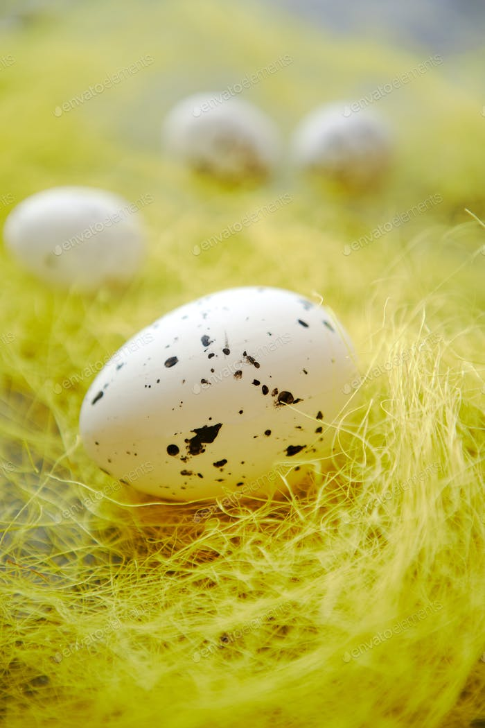 White Easter eggs with freckles placed on the yellow hay