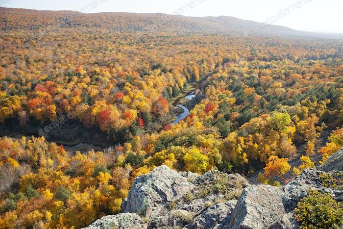 Hügel und Tal in Michigan mit Bäumen in glänzender Herbstfarbe über einem kleinen Fluss