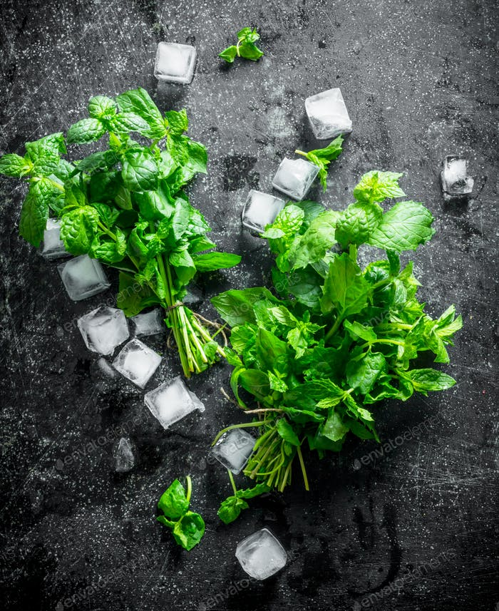 Fresh mint with ice cubes.