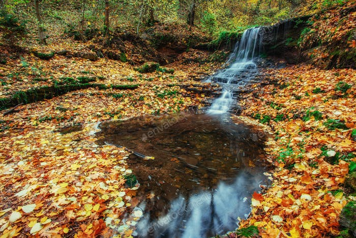 beautiful waterfall in forest autumn landscape. Beauty world