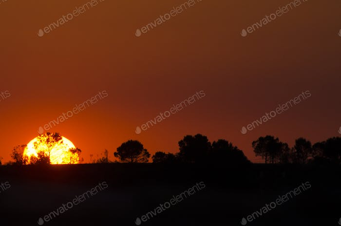 Beautiful landscape image with trees silhouette at sunset, Spain
