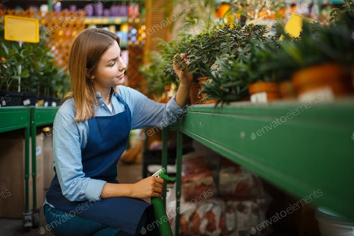 Gärtner kümmert sich um Pflanzen, Shop für Gartenarbeit