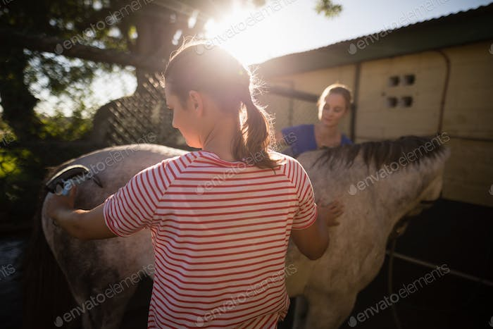 Friends cleaning horse at barn
