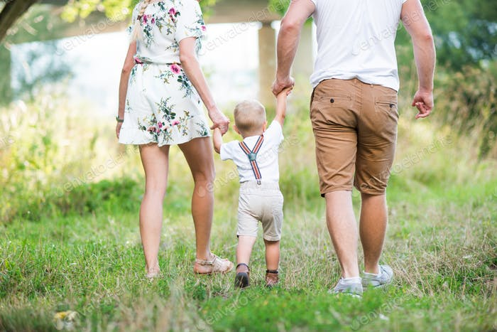 A rear view of young family with a small toddler boy in sunny summer nature.