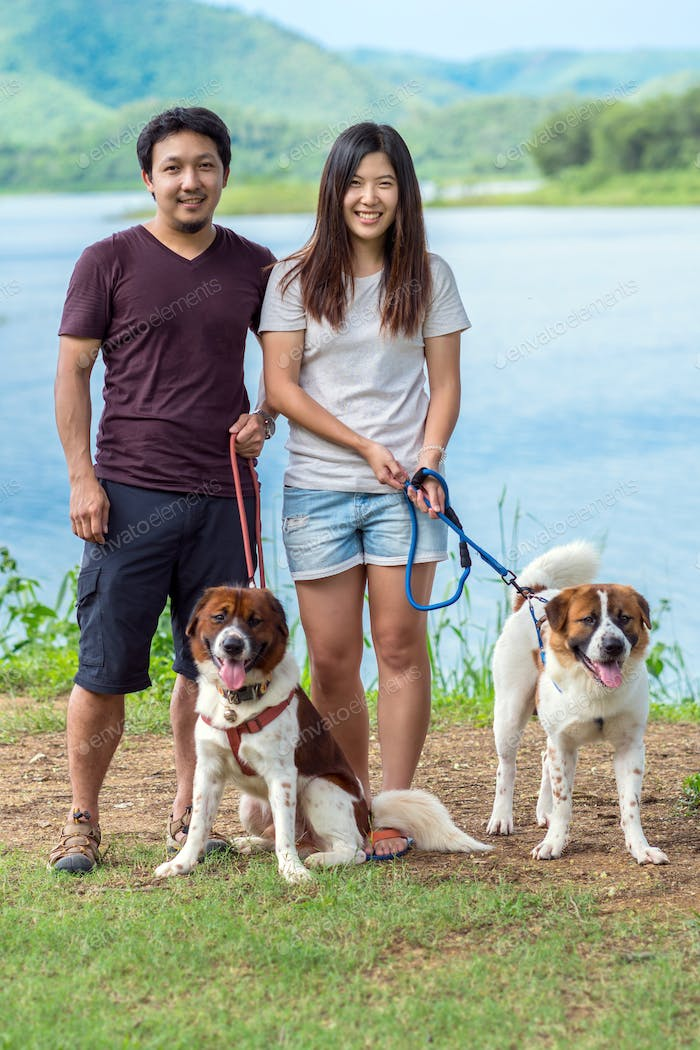 The asian Lover Doggy two Mixed breed dog in brown with white color standing beside the lake
