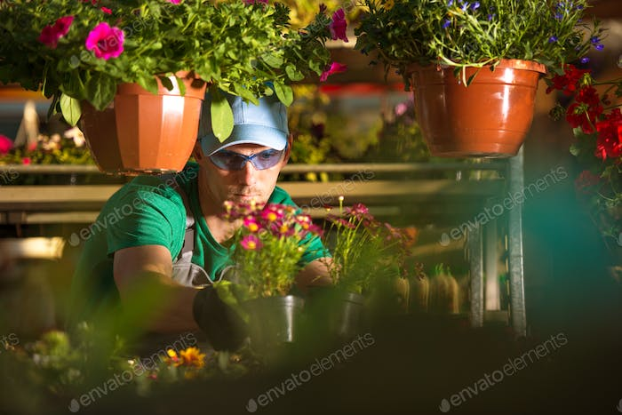 Flowers Store Owner
