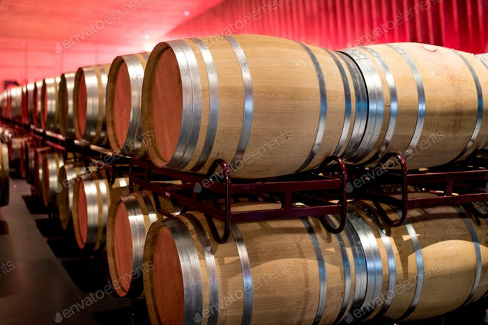 Wine barrels stored in a winery on the fermentation process