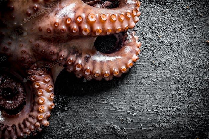 Das Oktopus-Tentakel-Essen.