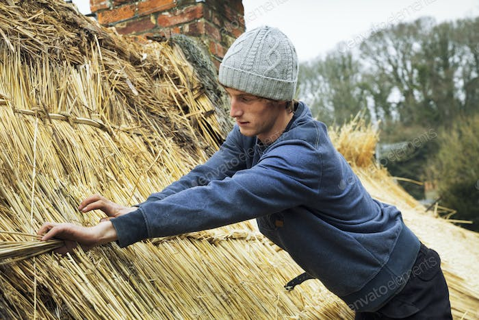 Thatcher standing on a roof, fastening straw at a seam.