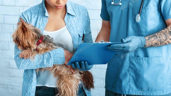 Владелец собаки подписывает форму согласия на операцию домашних животных в ветеринарной клинике, крупным планом