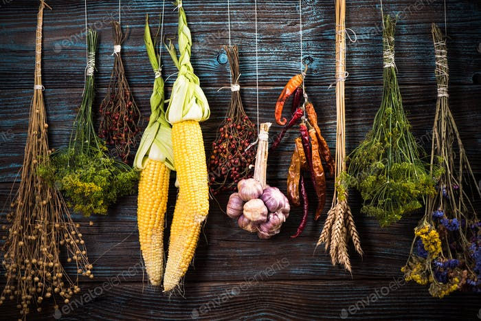 Autumn vegetables on wooden wall, harvest background