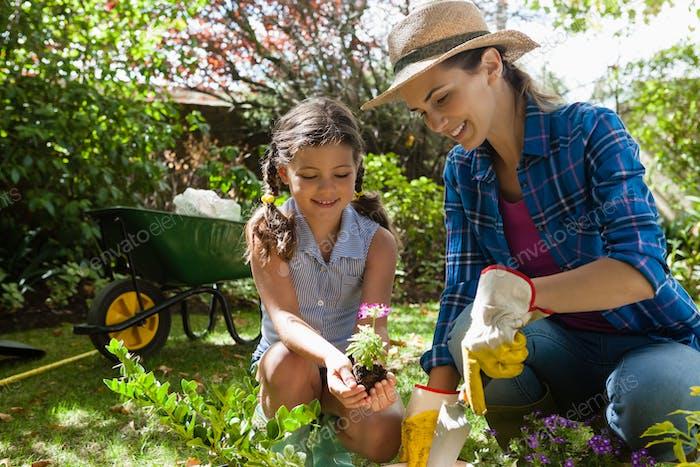 Lächelnde Mutter Lehre Tochter, um Sämlinge zu pflanzen