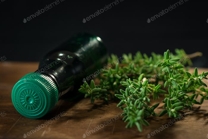 Thyme herb and oil