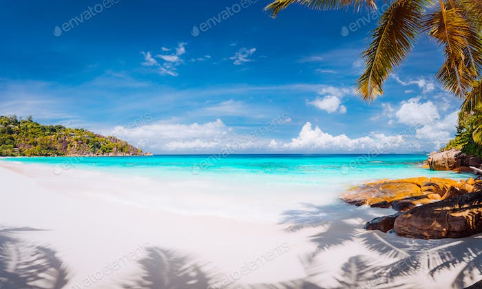 Vacation summer holidays background wallpaper. Perfect tropical paradisebeach crystal clear water