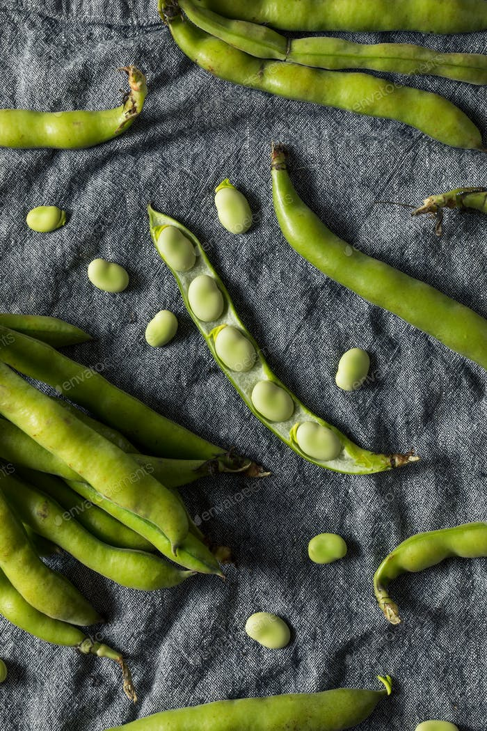 Raw Green Organic Fava Beans