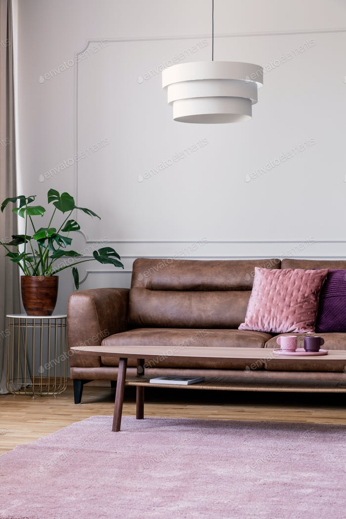 Plant on table next to leather sofa in vintage living room inter