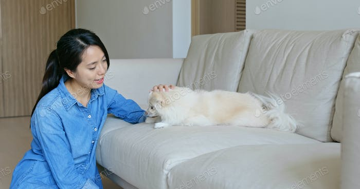 Frau kuscheln ihren pommerschen Hund zu Hause