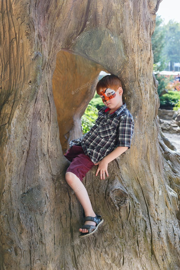 Boy child outdoors sit in tree with butterfly face painting