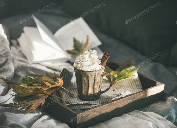 Autumn Hot chocolate with whipped cream and cinnamon on tray