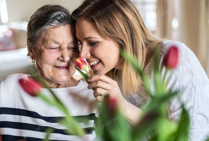 An elderly grandmother with an adult granddaughter at home, smelling flowers.