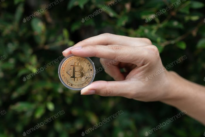 Joven sosteniendo BTC Bitcoin en la mano con arbusto verde en segundo plano