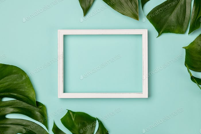 Creative flat lay with tropical plant and white frame for your text