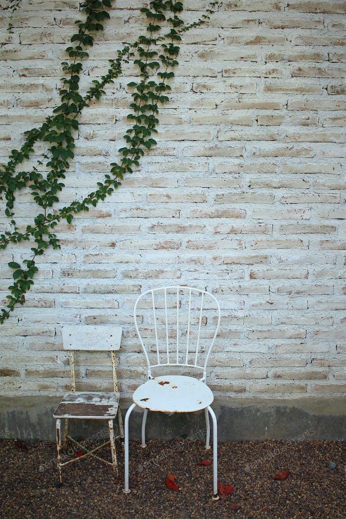 Old chairs in summer garden