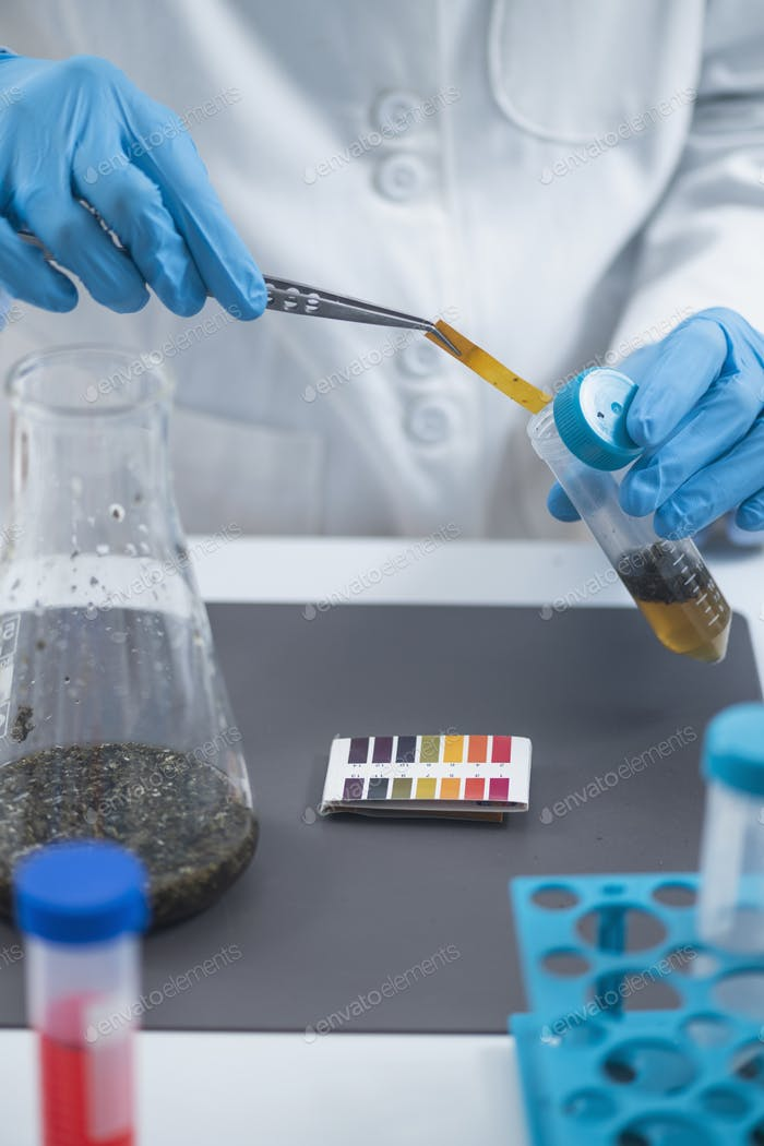 Agrochemical examination of agriculture sample in laboratory.