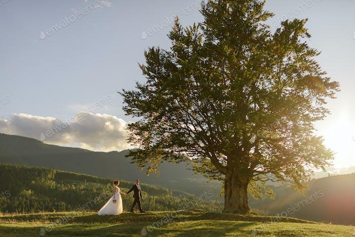 Fotografía de bodas en las montañas.